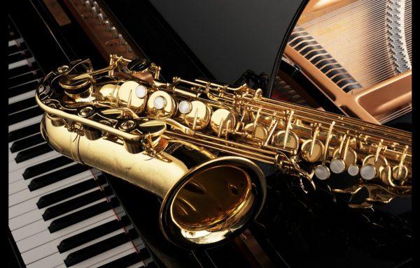- Music Instruments