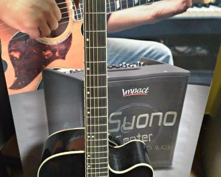 Chitarra acustica Greg Bennett D4 CE